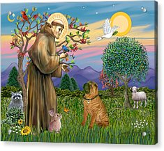 Saint Francis Blesses A Chinese Shar Pei Acrylic Print