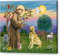 Saint Francis Blesses A Golden Retriever Acrylic Print by Jean Fitzgerald