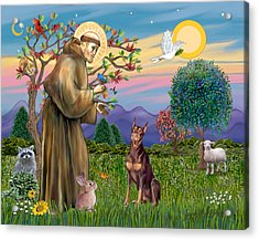 Saint Francis Blesses A Red Doberman Acrylic Print by Jean Fitzgerald