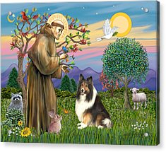 Saint Francis Blesses A Sable And White Collie Acrylic Print by Jean Fitzgerald