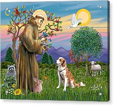 Saint Francis Blesses A Welsh Springer Spaniel Acrylic Print by Jean Fitzgerald