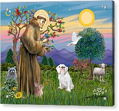 Saint Francis Blesses An English Bulldog Acrylic Print by Jean Fitzgerald
