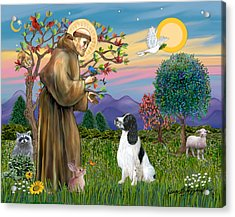 Saint Francis Blesses An English Springer Spaniel Acrylic Print by Jean Fitzgerald
