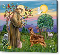 Saint Francis Blesses An Irish Setter Acrylic Print by Jean Fitzgerald