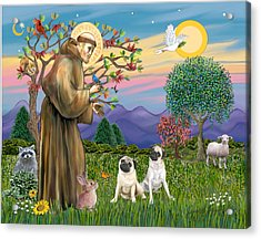 Saint Francis Blesses Two Fawn Pugs Acrylic Print