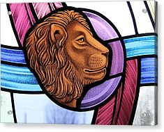 Saint Mark Lion Acrylic Print by Gilroy Stained Glass