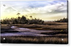 Saint Marks Wetland Sunset Acrylic Print by Lynn Palmer