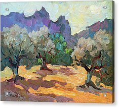 Saint Remy Olive Trees Acrylic Print by Diane McClary