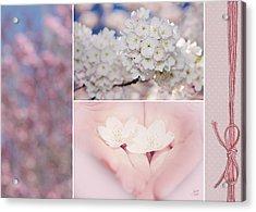 Sakura Triptych Acrylic Print by Lisa Knechtel