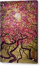 Sakura Acrylic Print by Vrindavan Das