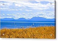 Salish Sea From Hornby Island Acrylic Print by Brian Sereda