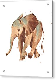 Sally Softly Elephant Acrylic Print by Alison Fennell