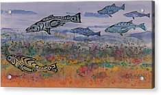 Salmon In The Stream Acrylic Print