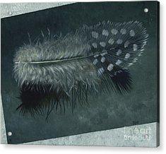 Sal's Feather Acrylic Print