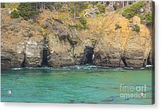Salt Point Sea Caves Acrylic Print