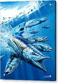 Salt Weapons Acrylic Print by Dennis Friel