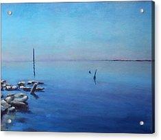 Salton Sea Acrylic Print by Rosemarie Hakim