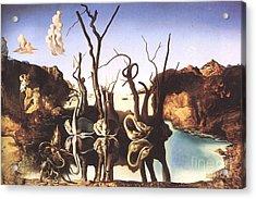 Salvador Dali Acrylic Print by Christo Grudev