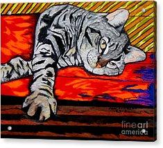 Sam The Cat Acrylic Print