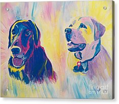Sammy And Toby Acrylic Print by Judy Via-Wolff