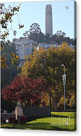 San Francisco Coit Tower At Levis Plaza 5d26216 Acrylic Print by Wingsdomain Art and Photography