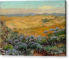 San Francisco Sand Dunes And Wildflowers Acrylic Print by Roberto Prusso