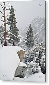 Acrylic Print featuring the photograph San Jacinto Winter Wilderness by Kyle Hanson