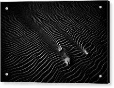 Sand #2 Acrylic Print