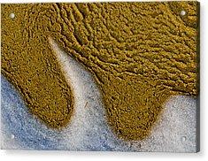 Sand Abstract Acrylic Print