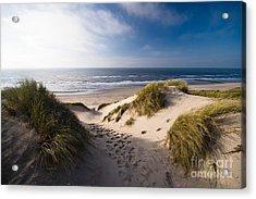 Sand Dune Acrylic Print by Boon Mee