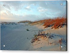 Acrylic Print featuring the photograph Sand Dune On Tybee Island by Allen Carroll