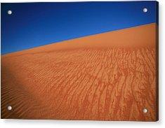 Sand Dune Acrylic Print by Shari Mattox