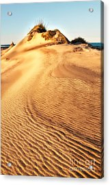 Sand Dune Textures - Outer Banks I Acrylic Print by Dan Carmichael