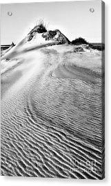 Sand Dune Textures - Outer Banks II Acrylic Print by Dan Carmichael