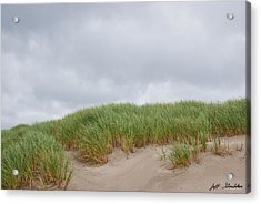 Sand Dunes And Grass Acrylic Print