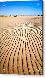 Sand Dunes At Eucla Acrylic Print by Colin and Linda McKie