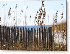 Acrylic Print featuring the photograph Sand Dunes by Michele Kaiser