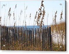 Sand Dunes Acrylic Print by Michele Kaiser