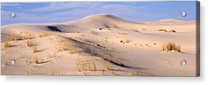 Sand Dunes On An Arid Landscape Acrylic Print by Panoramic Images