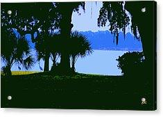 Sand Hill Cranes On Shore Acrylic Print