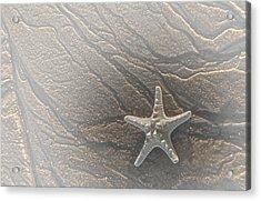 Sand Prints And Starfish II Acrylic Print