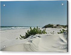 Sand Veggie Acrylic Print by Denis Lemay