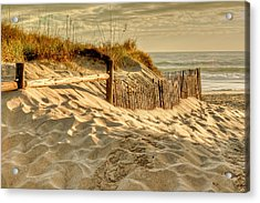Sandbridge Morning Acrylic Print by David Cote
