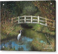 Sandhill Crane At Spring Creek Acrylic Print