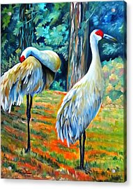 Sandhill Cranes At Twilight Acrylic Print