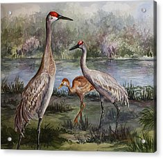 Acrylic Print featuring the painting Sandhill Cranes On Alert by Roxanne Tobaison