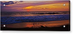 Acrylic Print featuring the photograph Sandpiper On The Beach by John Harding