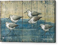 Sandpipers Oil Distressed Acrylic Print
