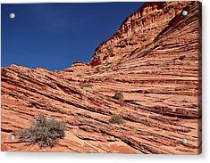 Sandstone Layers, Vermillion Cliffs Acrylic Print