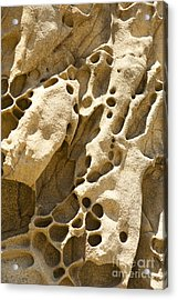 Sandstone Rock Formation Two At Big Sur  Acrylic Print by Artist and Photographer Laura Wrede